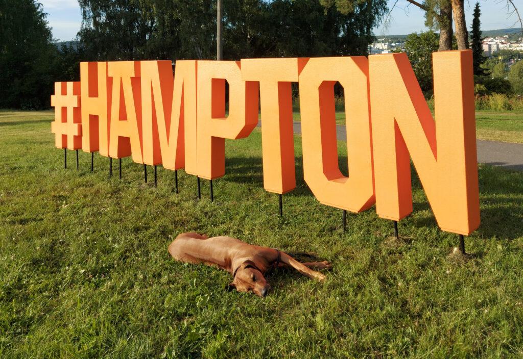 Koira loikoilee Hämpton-kyltin edustalla